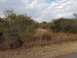 1.2HA vacant land in Pebble Rock golf and eco estate